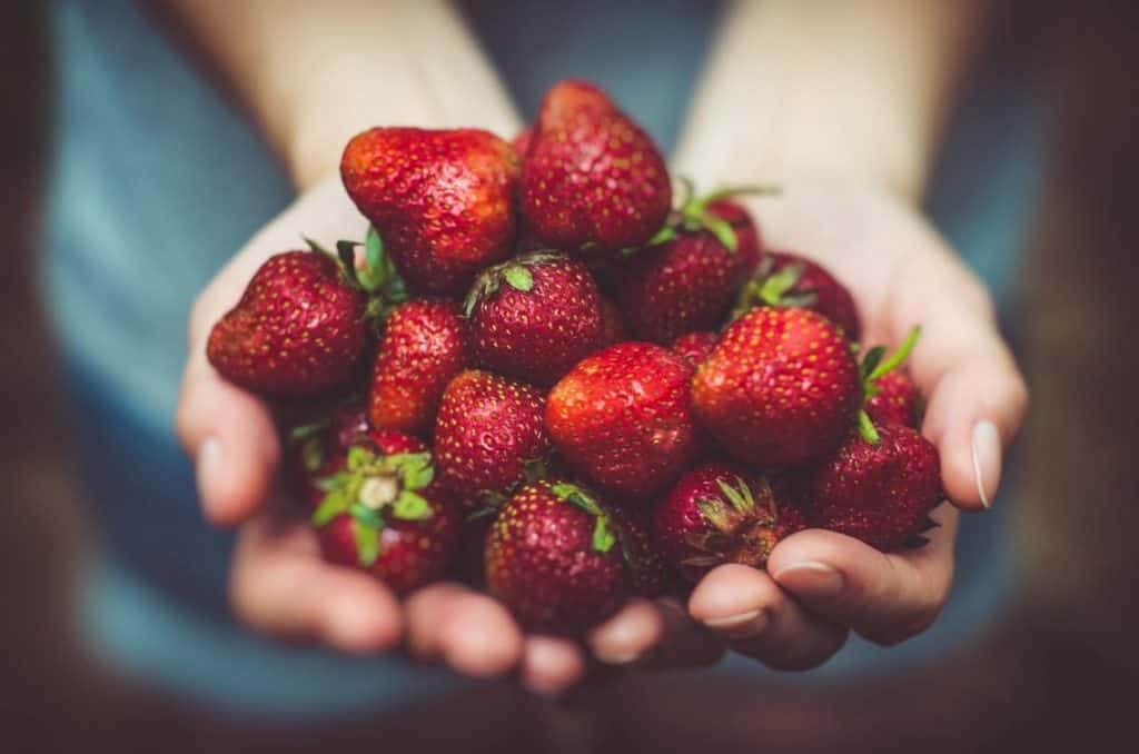 Strawberry Fields | We Don't Sell Strawberries